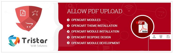 Allow PDF Upload